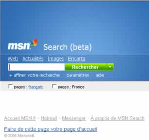 Visuel de MSN search.